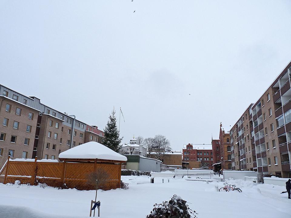 vinter_2010_017-jpg