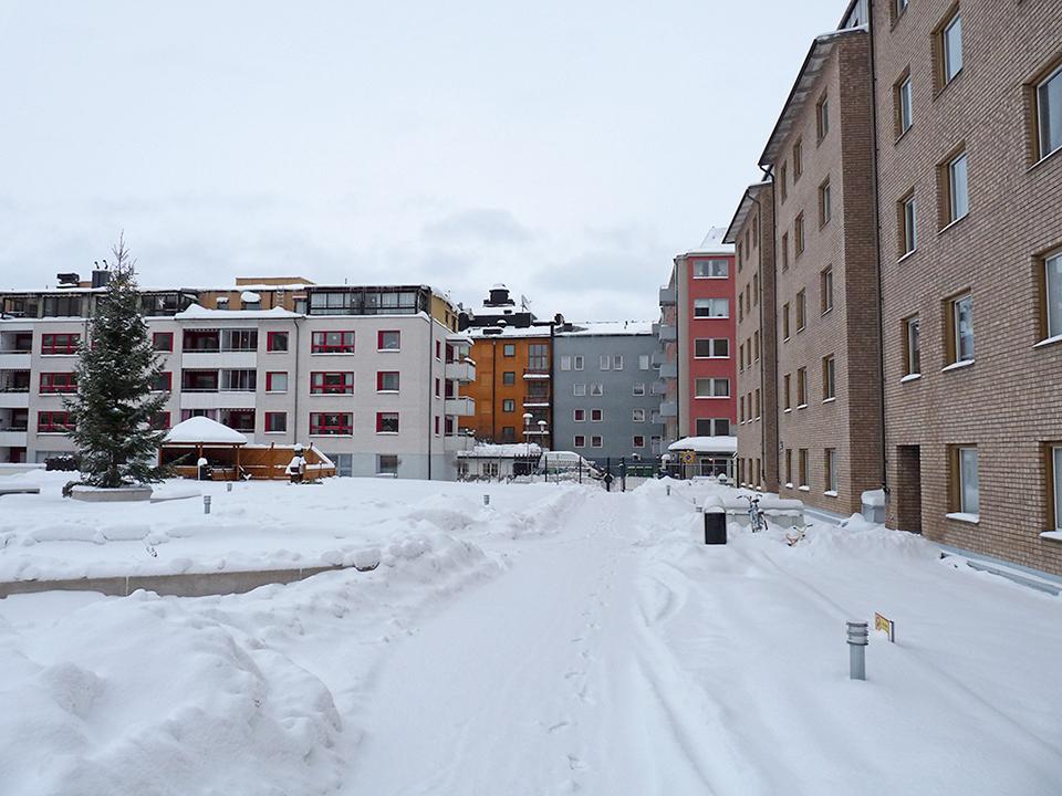 vinter_2010_026-jpg