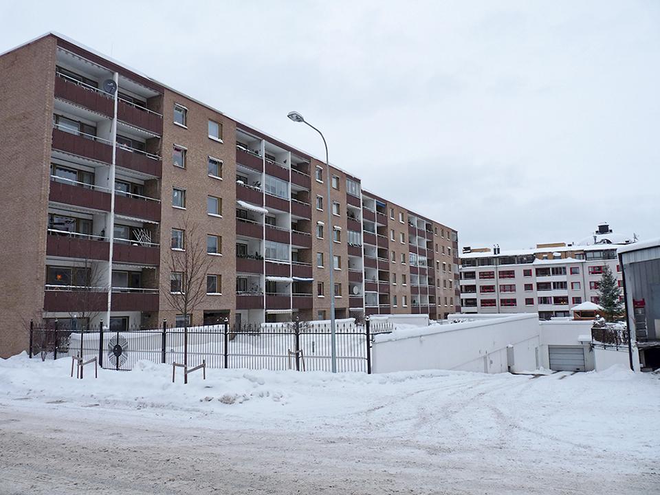 vinter_2010_005-jpg
