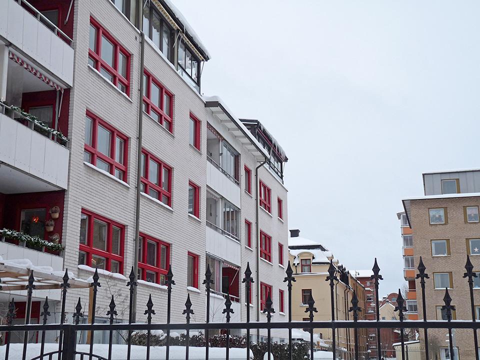 vinter_2010_013-jpg