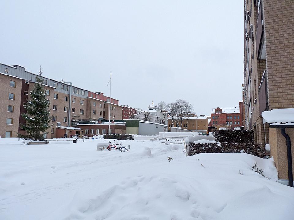 vinter_2010_015-jpg